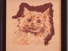 29-Gato