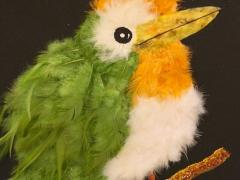 79-Pájaro plumas